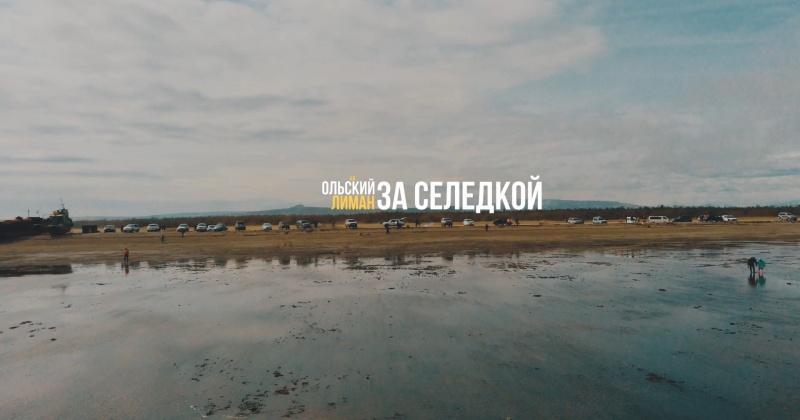 В интернет-сети  началось народное голосование за лучшие ролики онлайн-фестиваля «Красиво.ДВ»