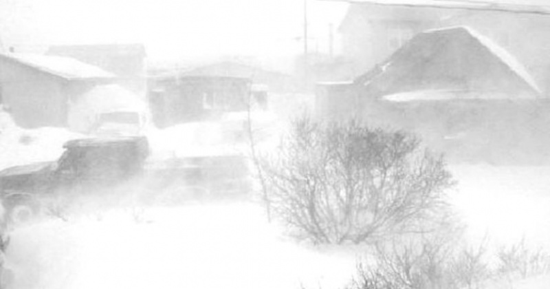 Ветер с низовой метелью ожидается в районах Колымы