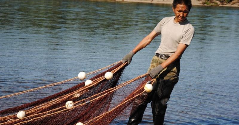 В Магадане прорабатывают возможность  обеспечить  представителей КМНС доступом к водным биоресурсам