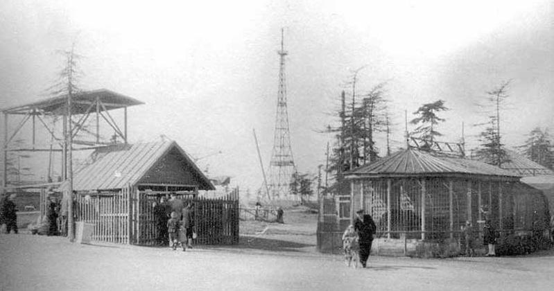 Зоологический уголок открыли в городском парке Магадана 71 год назад