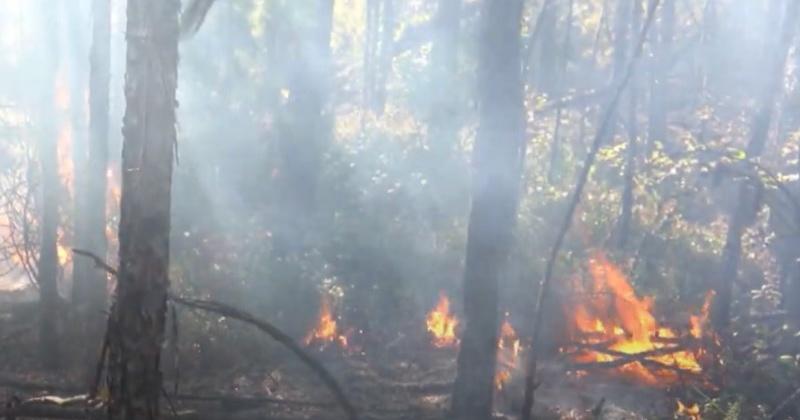 В городских округах Магаданской области сохраняется высокая пожарная опасность