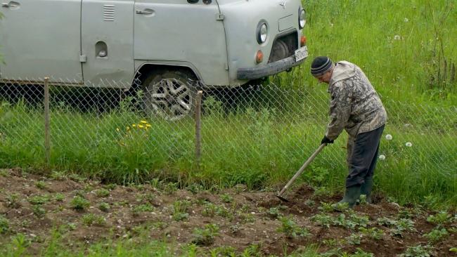 Более тысячи «Дальневосточных гектаров» освоили колымчане