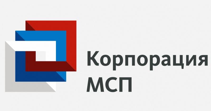 Правительство РФ запустило новую меру господдержки для малого и среднего бизнеса при поддержке Корпорации МСП